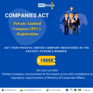 Private Limited Company ( PLC ) Registration