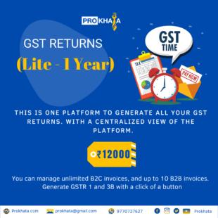 GST Returns (Lite - 1 Year)