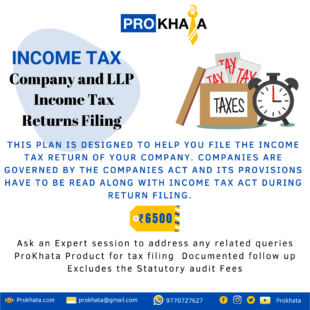 Company and LLP Income Tax Returns Filing INCOME TAX